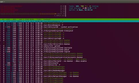 Useful Terminal Commands Every Web Developer Should Know